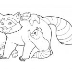 dibujo mapache 4